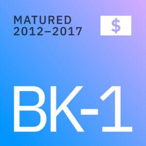 BK Opportunities Fund 1