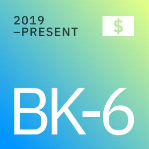 BK Opportunities Fund 6